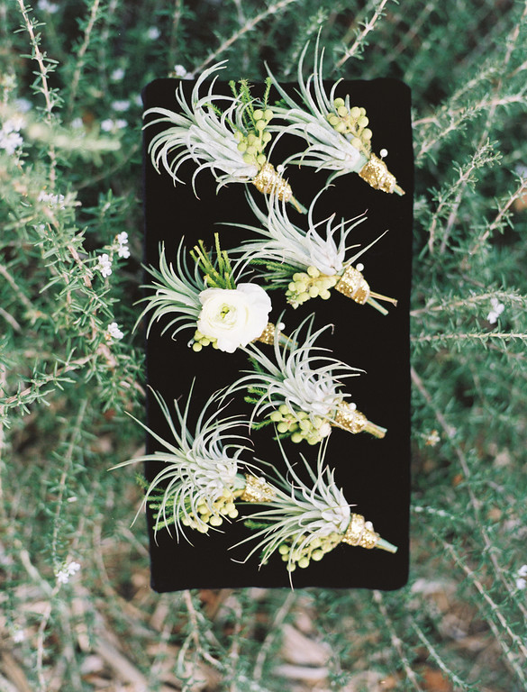 Air plant and white ranunculus boutonnieres for the groomsmen